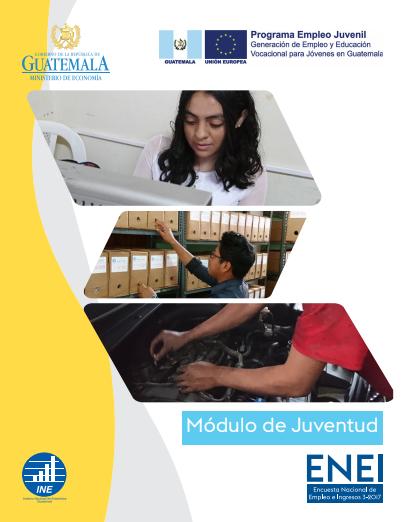 Módulo de Juventud - Encuesta Nacional de Empleo e Ingresos 3-2017